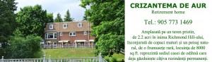 www.crizantemadeaur.com